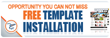 Free Template Installation Promo
