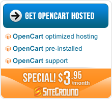 Special hosting offer with opencart template purchase
